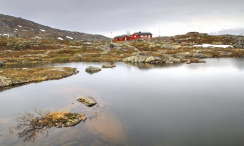Zdjecie NORWEGIA / Nordland / Bjørnfjell / Północna Norwegia