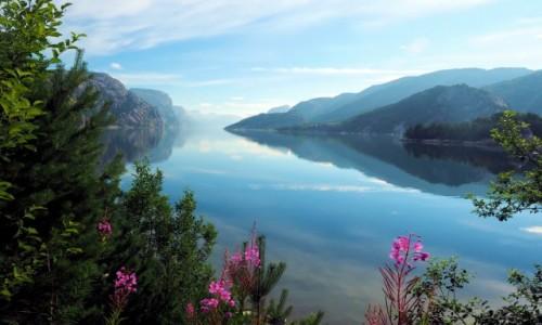 Zdjecie NORWEGIA / Rogaland / Hollesli / Sielanka nad Lysefjordem 3
