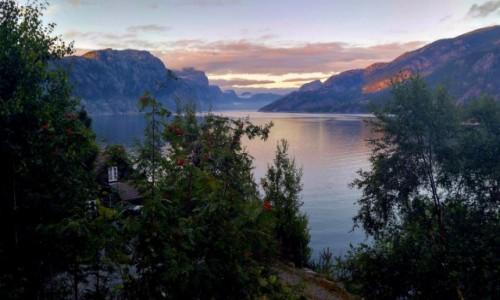NORWEGIA / Rogaland / Hollesli / Sielanka nad Lysefjordem 5