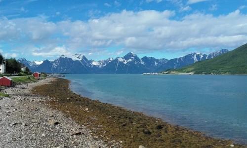 Zdjecie NORWEGIA / Troms / Lyngenfjord / Lyngenfjord