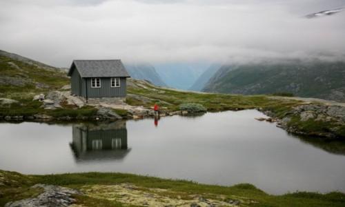 NORWEGIA / Møre og Romsdal / Aursjøvegen / Przy drodze Aursjøvegen