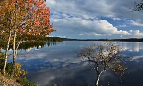 Zdjęcie NORWEGIA / Buskerud / Hemsedal / jesień...