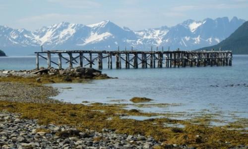 NORWEGIA / okolice Alty / fiord koło Alteidet / Północne lato