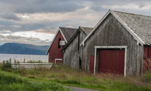 Zdjecie NORWEGIA / p�n. Norwegia / Runde / Runde