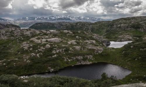 NORWEGIA / p�n. Norwegia / p�askowy� / Na p�askowy�u Hardangarvidda