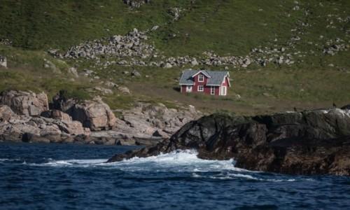 NORWEGIA / p�n. Norwegia / Lofoty / ... i �adnych s�siad�w...