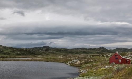 Zdjęcie NORWEGIA / płn. Norwegia / płaskowyż / ... i żadnych reniferów, a obiecali...