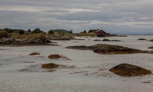 Zdjęcie NORWEGIA / płn. Norwegia / Helgeland / ... i po kamyczkach do domu...