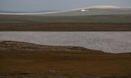 Zdjęcie NORWEGIA / płn. Norwegia / płn. Norwegia / Wzdłuż Śnieżnej Drogi...