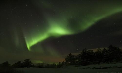 Zdjecie NORWEGIA / Nordland / Beiarn / Przemijająca chwila