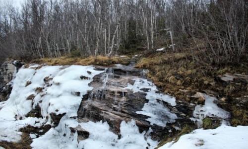 Zdjecie NORWEGIA / Tromso / Harstad / Idzie wiosna?