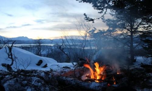 Zdjecie NORWEGIA / Tromso / Harstad / Na szczycie