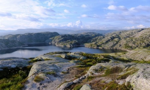 NORWEGIA / Rogaland / - / Into the wild