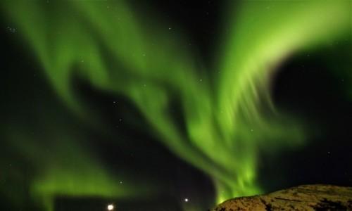 Zdjęcie NORWEGIA / Tromso / Sammaroya / Zorza
