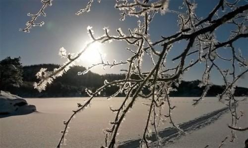 Zdjecie NORWEGIA / Tromso / przyroda / Zima ze słońcem