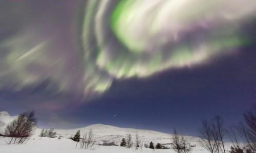 Zdjęcie NORWEGIA / Nord Norge / Bodø / Zorza polarna