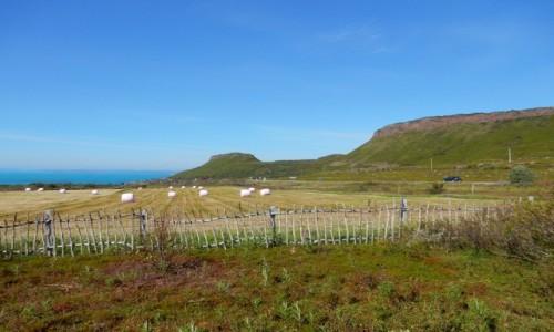 Zdjecie NORWEGIA / Varanger / W drodze do Hamningberg / Północ Norwegii