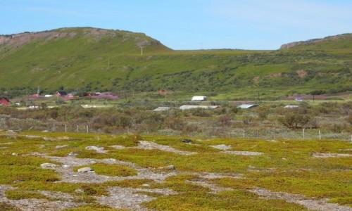 Zdjęcie NORWEGIA / Varanger / W drodze do Hamningberg / Północ Norwegii