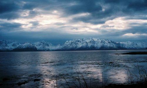 Zdjecie NORWEGIA / Północny Nordland / Fiord na Północny-Zachód od Narwiku / NORWESKI WIDOCZEK