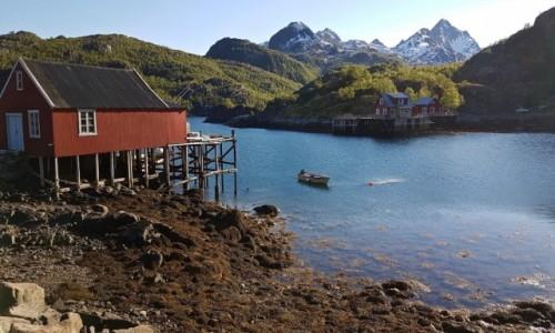 Zdjęcie NORWEGIA / Nordland / LOFOTY / Lofoty
