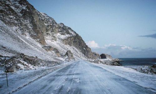 Zdjęcie NORWEGIA / Morza Barentsa / Niedaleko miejscowośći Berlevag / DROGA PRZY MORZU BARENTSA