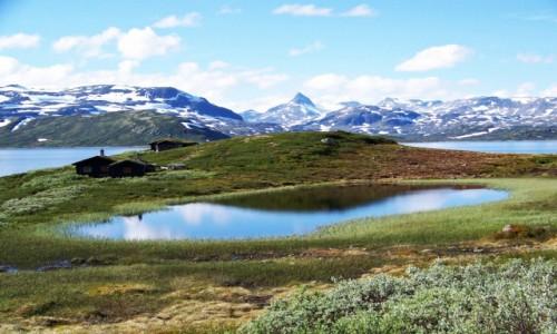 Zdjęcie NORWEGIA / Jotunheimen / Droga 252 / Nad jeziorem Tyin