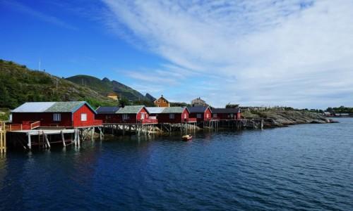 Zdjęcie NORWEGIA / Lofoty /  Wyspa Moskenesoy / W szeregu