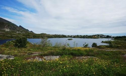 Zdjecie NORWEGIA / Lofoty / Sørvågen / Nad jeziorem