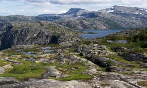 Zdjecie NORWEGIA / Nordland / Park Narodowy Rago / Rago