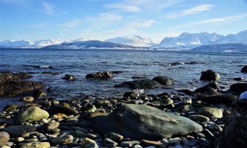 Zdjęcie NORWEGIA / Troms / Oldervik / Kamienista plaża