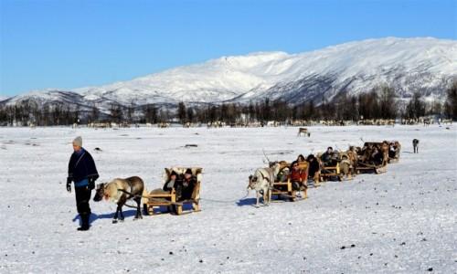 Zdjecie NORWEGIA / Troms / Tønsvik / Noga, za nogą