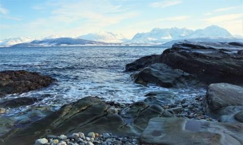 Zdjecie NORWEGIA / Troms / Oldervik / Skalisty brzeg