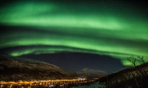 Zdjecie NORWEGIA / Troms / Sjøtun / Zorza polarna w Sjøtun
