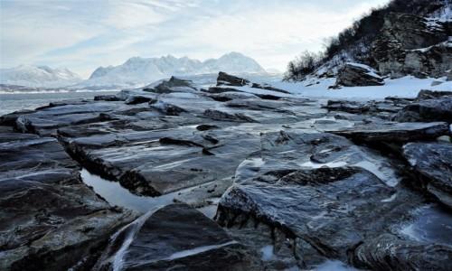 Zdjęcie NORWEGIA / Troms / Oldervik / Kamienna plaża