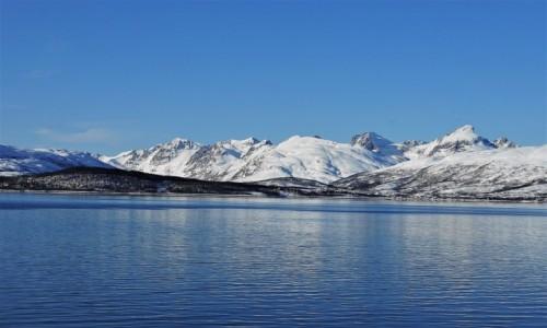 Zdjecie NORWEGIA / Troms / Tromsø / Poranny błękit