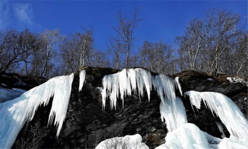 Zdjecie NORWEGIA / Troms / Oldervik  / Zima odchodząc szczerzy kły