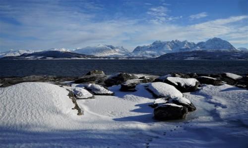 Zdjecie NORWEGIA / Troms / Oldervik  / Ślady