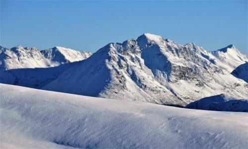 Zdjecie NORWEGIA / Troms / Tromsdalen  / Trochę chłodu