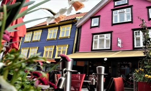 Zdjecie NORWEGIA / Zachodnia Norwegia / Stavanger  / Kolorowo w dzień