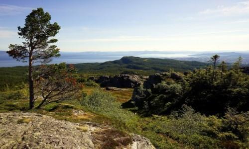 Zdjecie NORWEGIA / Trøndelag  / Gråkallhytta / Na horyzoncieTrondheim