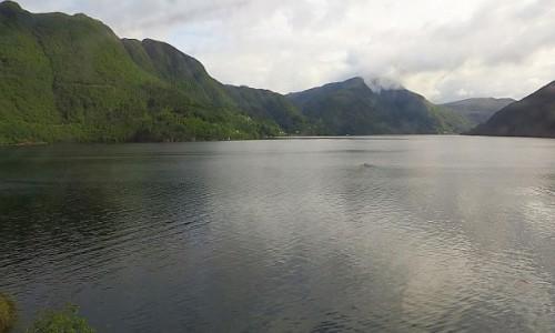 Zdjecie NORWEGIA / Norwegia południowo - zachodnia / trasa kolejowa Bergen - Myrdal / norweskie krajobrazy
