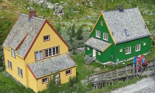 Zdjęcie NORWEGIA / Norwegia południowo - zachodnia / trasa kolejki flamsbana Myrdal - Flam / norweska architektura