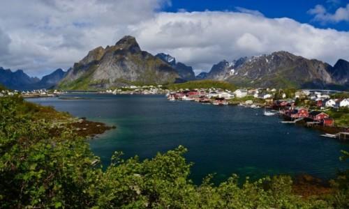 Zdjęcie NORWEGIA / Moskenesøya  / Lofoty / Reine...