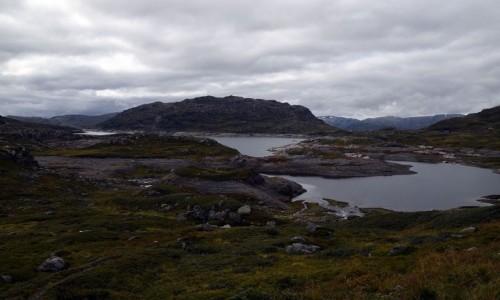 NORWEGIA / Telemark / Harddangervidda / Harddangervidda