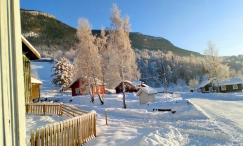 Zdjecie NORWEGIA / Oppland / Favang / Uff, jak zimno.