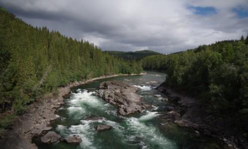 Zdjecie NORWEGIA / Norwegia północna / Gdzieś po drodze... / Norwegia