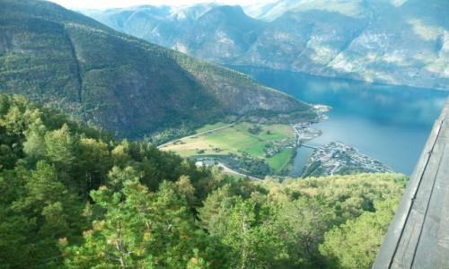 Zdjecie NORWEGIA / -Pn.  - Zach. Norwegia / Sognefjord / Fjordy c.d