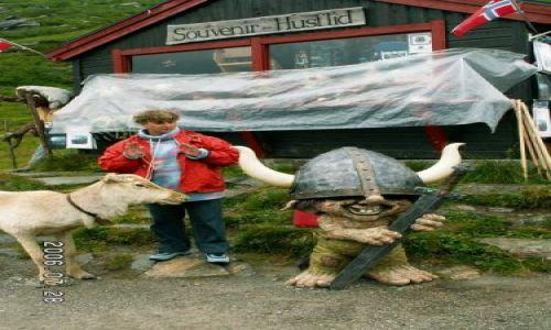 Zdjęcie NORWEGIA / brak / Droga 63 / Sklep z gadżetami przed drogą trolli