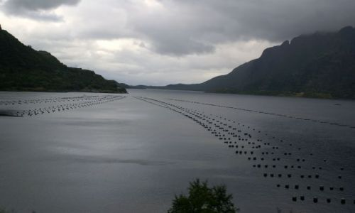 Zdjecie NORWEGIA / brak / norwegia / łowisko