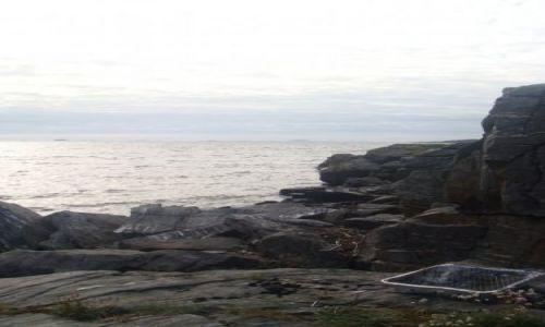 Zdjecie NORWEGIA / Rogaland / Stavanger / Grillowanie w Stavanger